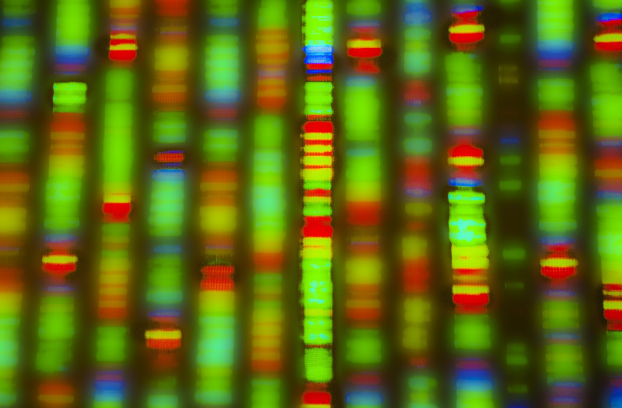 Encrypgen nurtures the community of researchers, scientists and doctors in the field of genomics